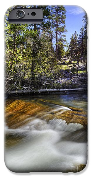 Forest iPhone Cases - Falls at Beaver Ponds iPhone Case by Dianne Phelps