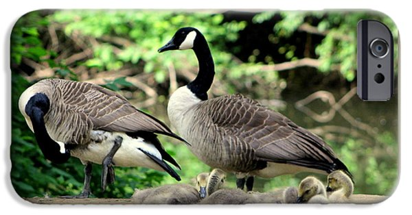 Fury iPhone Cases - Family Brood iPhone Case by Deborah  Crew-Johnson