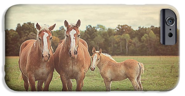 Farm iPhone Cases - Family iPhone Case by Carrie Ann Grippo-Pike