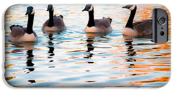 Autumn iPhone Cases - Family of Geese iPhone Case by Shelby  Young