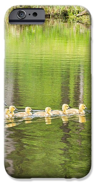 Family Outing iPhone Case by Bill Pevlor