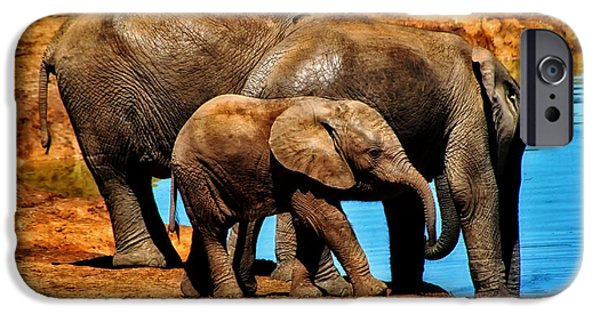 Elephant iPhone Cases - Family Watering Hole iPhone Case by Mountain Dreams