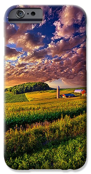 Corn iPhone Cases - Famscaped iPhone Case by Phil Koch