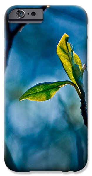 Fantasy in Blue iPhone Case by Linda Unger