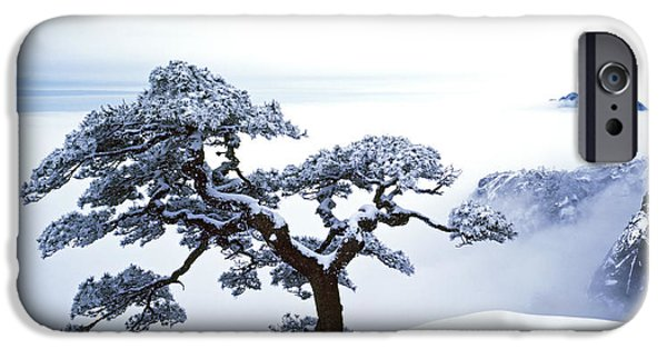 Winter Landscape iPhone Cases - Fare-Well Pine Tree iPhone Case by King Wu
