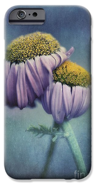 Poetic Photographs iPhone Cases - Farewell iPhone Case by Priska Wettstein
