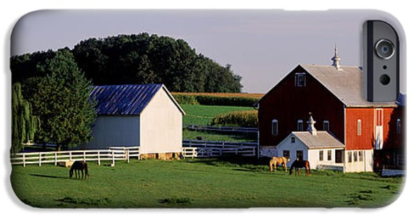 Horse iPhone Cases - Farm, Baltimore County, Maryland, Usa iPhone Case by Panoramic Images