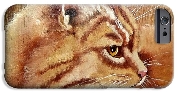 Orange Tabby Paintings iPhone Cases - Farm Cat on Rustic wood iPhone Case by Debbie LaFrance