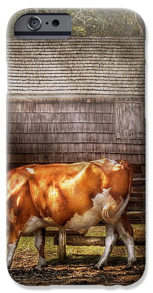 Farm - Cow - A couple of Cows iPhone Case by Mike Savad