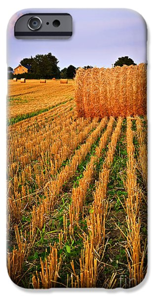Crops iPhone Cases - Farm field with hay bales at sunset in Ontario iPhone Case by Elena Elisseeva