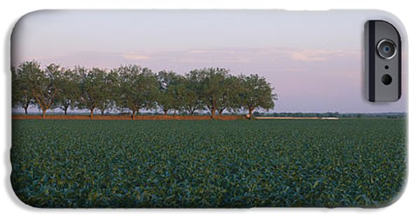 Agricultural iPhone Cases - Farm Fields Outside Of San Antonio iPhone Case by Panoramic Images