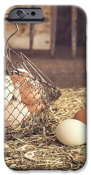 Agricultural iPhone Cases - Farm Fresh Eggs iPhone Case by Edward Fielding