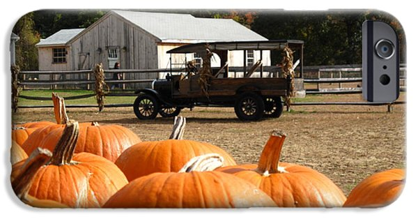 Concord Ma. iPhone Cases - Farm Stand Pumpkins iPhone Case by Barbara McDevitt