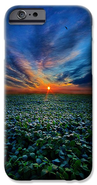 Geographic iPhone Cases - Farmers Delight iPhone Case by Phil Koch
