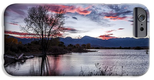Sunset iPhone Cases - Farmers Pond Sunset iPhone Case by Cat Connor