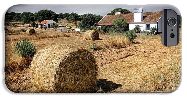 Crops iPhone Cases - Farmland iPhone Case by Carlos Caetano