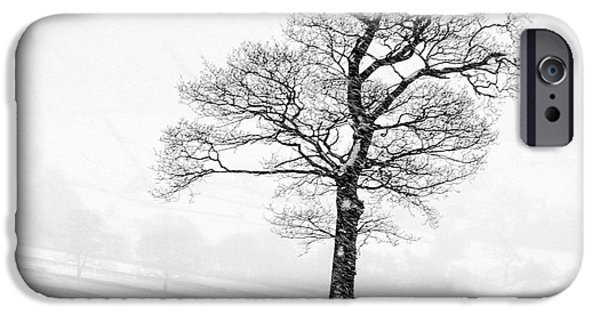 Fauna iPhone Cases - Farndale Winter iPhone Case by Janet Burdon