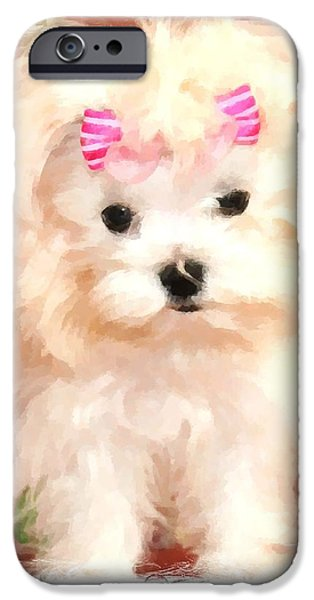 Maltese Puppy iPhone Cases - Faux Maltese BELLA iPhone Case by Margaret Newcomb