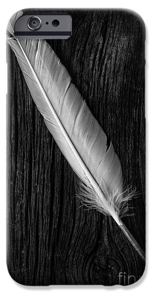 Quill iPhone Cases - Feather iPhone Case by Edward Fielding