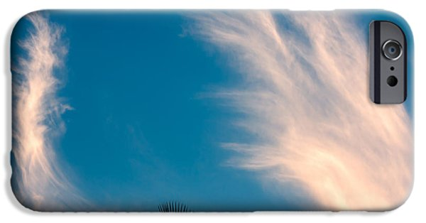 Fibrous Crystals iPhone Cases - Feathered Horns iPhone Case by John Bailey