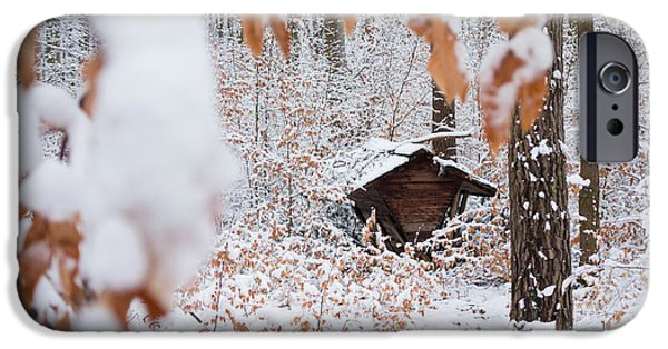 Wintertime iPhone Cases - Feeding site in the forest in winter  iPhone Case by Matthias Hauser