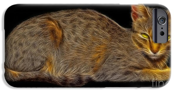 Gray Hair Mixed Media iPhone Cases - Felis catus or cat fractal art iPhone Case by Image World