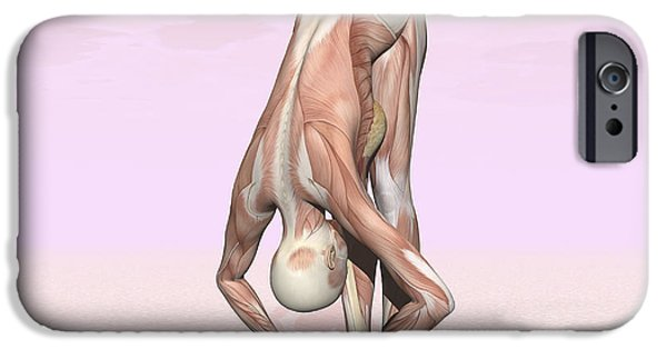 Concentration Digital iPhone Cases - Female Musculature Performing Big Toes iPhone Case by Elena Duvernay