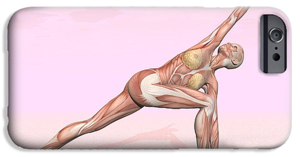 Concentration Digital iPhone Cases - Female Musculature Performing Revolved iPhone Case by Elena Duvernay