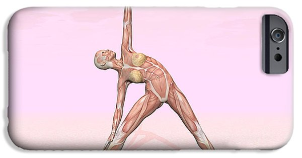 Concentration Digital iPhone Cases - Female Musculature Performing Triangle iPhone Case by Elena Duvernay