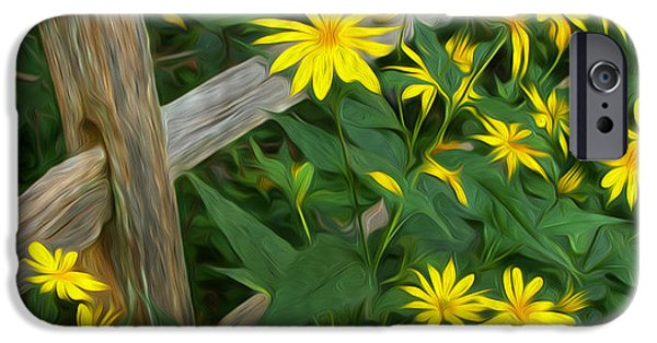 Split Rail Fence iPhone Cases - Fence and Flowers iPhone Case by Brian Mollenkopf