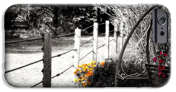 Pines iPhone Cases - Fence near the Garden iPhone Case by Julie Hamilton