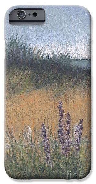 Sand Dunes Pastels iPhone Cases - Fenced-In Dune iPhone Case by Ginny Neece