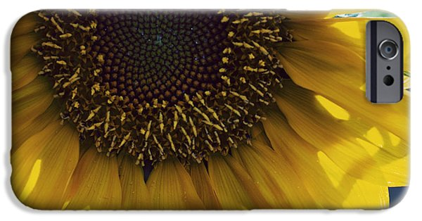 Annual iPhone Cases - Fermats Spiral iPhone Case by Juli Scalzi