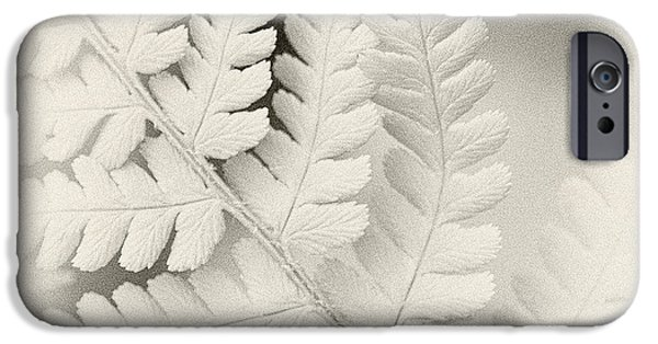 Close Up iPhone Cases - Fern 1 iPhone Case by Janet Burdon