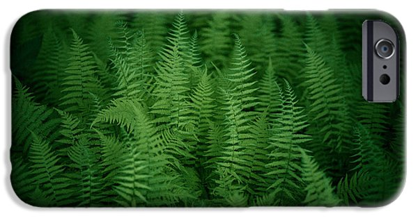 Virginia Photographs iPhone Cases - Fern Bed iPhone Case by Shane Holsclaw