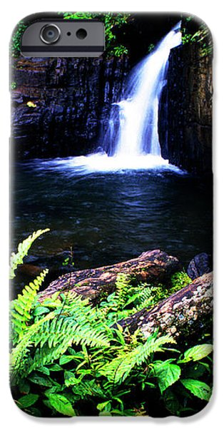 Ferns Flowers and Waterfall iPhone Case by Thomas R Fletcher