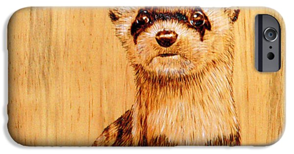 Predator Pyrography iPhone Cases - Ferret iPhone Case by Ron Haist
