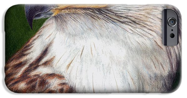 Colored Pencils iPhone Cases - Ferruginous Hawk iPhone Case by Pat Erickson