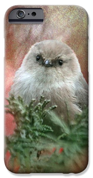 Small iPhone Cases - Festive Bushtit iPhone Case by Angie Vogel