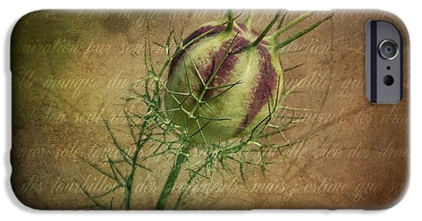 Tendrils iPhone Cases - Fey Poppy Magic iPhone Case by Terry Rowe