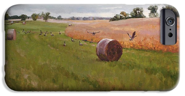 Haybales Paintings iPhone Cases - Field Day iPhone Case by Scott Harding
