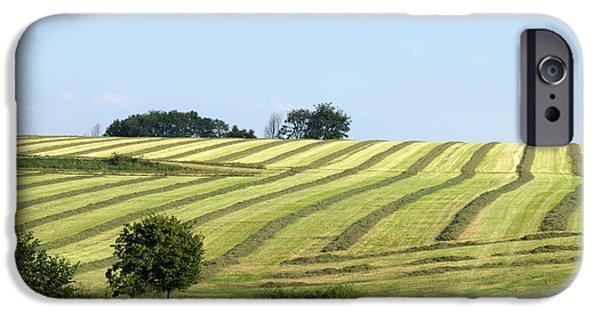Limburg iPhone Cases - Field In Summertime iPhone Case by Jolly Van der Velden