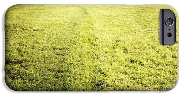Pathway iPhone Cases - Field iPhone Case by Les Cunliffe