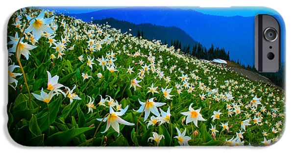 Meadow Photographs iPhone Cases - Field of Avalanche Lilies iPhone Case by Inge Johnsson