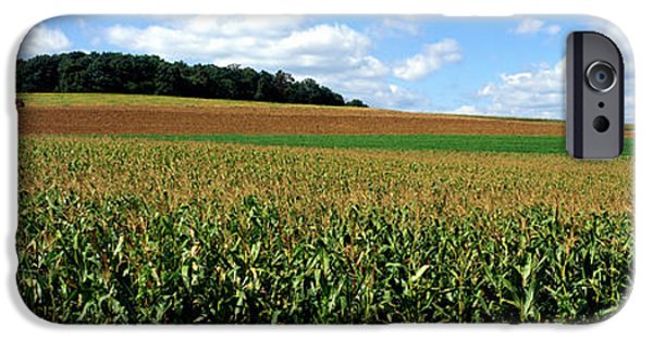 Carroll iPhone Cases - Field Of Corn With Tractor In Distance iPhone Case by Panoramic Images