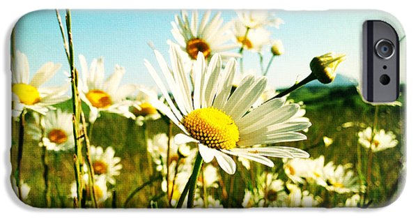 Floral Photographs iPhone Cases - Field of daisies iPhone Case by Les Cunliffe