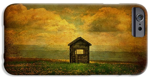 Shed Digital Art iPhone Cases - Field of Dandelions iPhone Case by Lois Bryan
