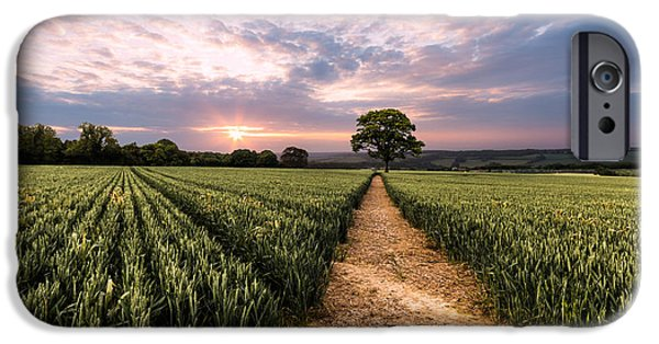 Crops iPhone Cases - Field of dreams iPhone Case by Ian Hufton