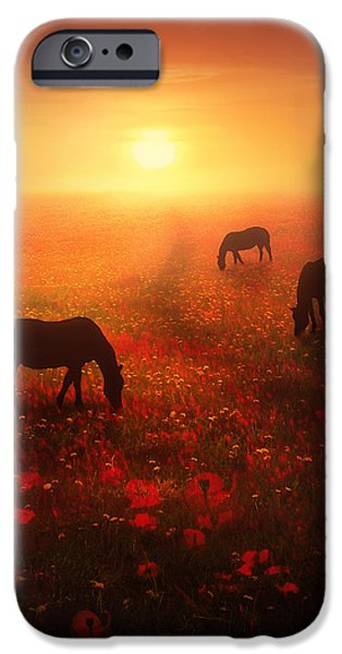Horse Digital Art iPhone Cases - Field of Dreams iPhone Case by Jennifer Woodward