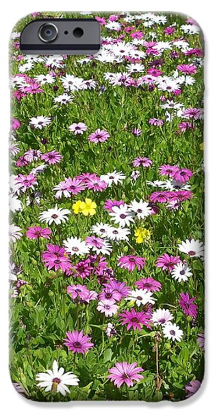 Living With Joy iPhone Cases - Field of Flowers iPhone Case by Deborah  Montana